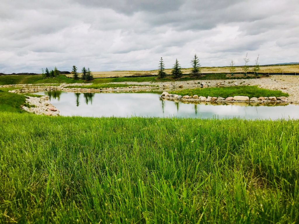 Harmony Pond